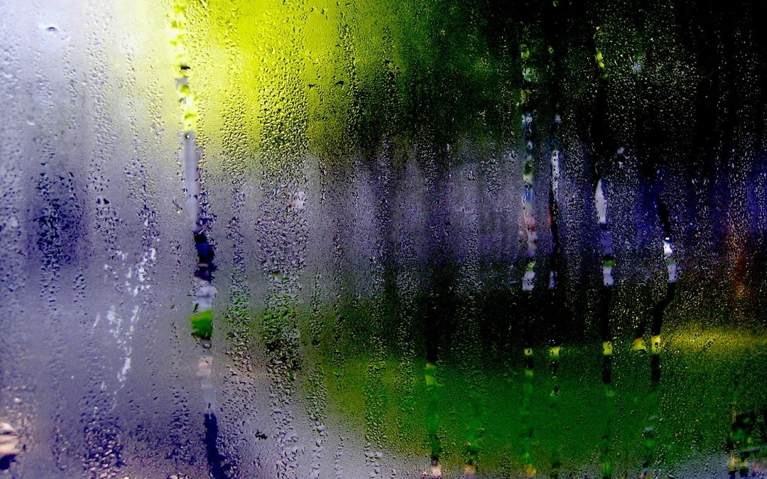 condensation-on-windows-energy-efficient-windows-and-doors-Weaver-Exterior