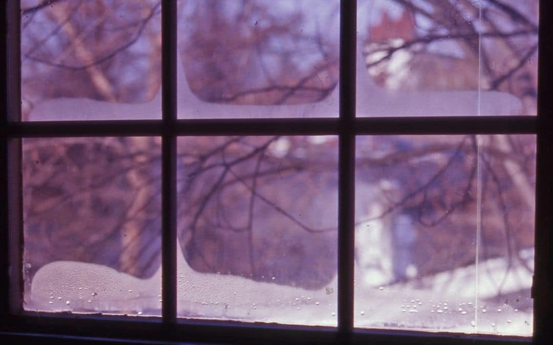 condensation-or-frost-inside-windows-repair-or-replace-windows-Weaver-Barrie