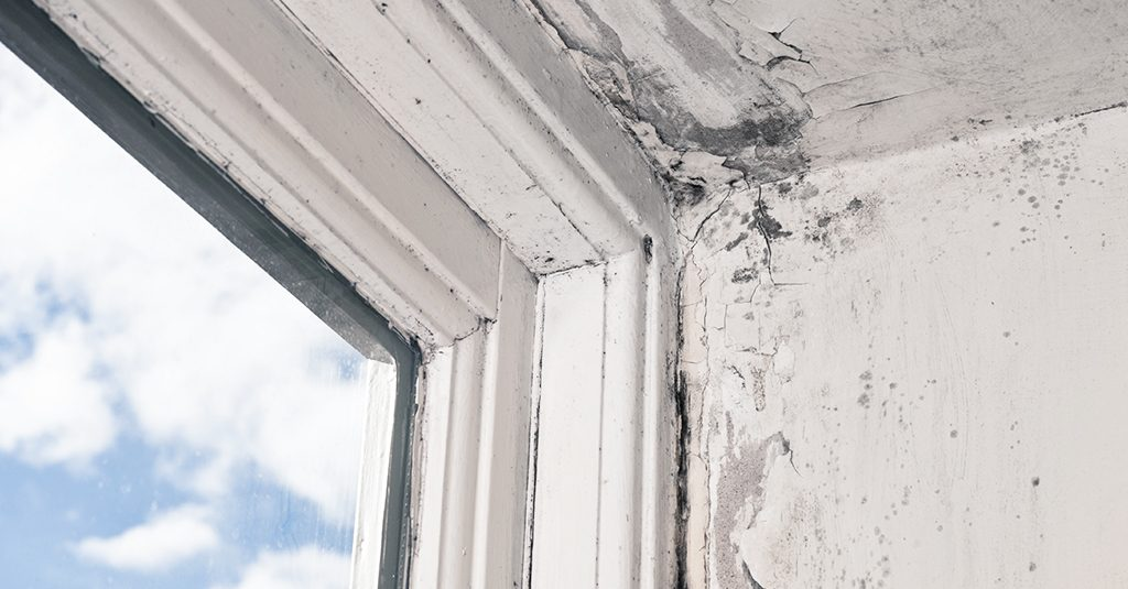 Repairing a Rotted Window Sill? What You Need to Know | rotting window | Weaver Exterior Remodeling Barrie