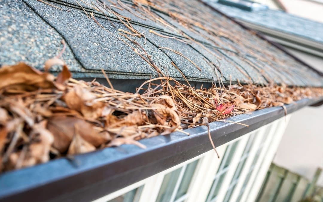 clean-out-eavestroughs-for-summer-home-maintenance-Weaver-Exterior-Remodeling