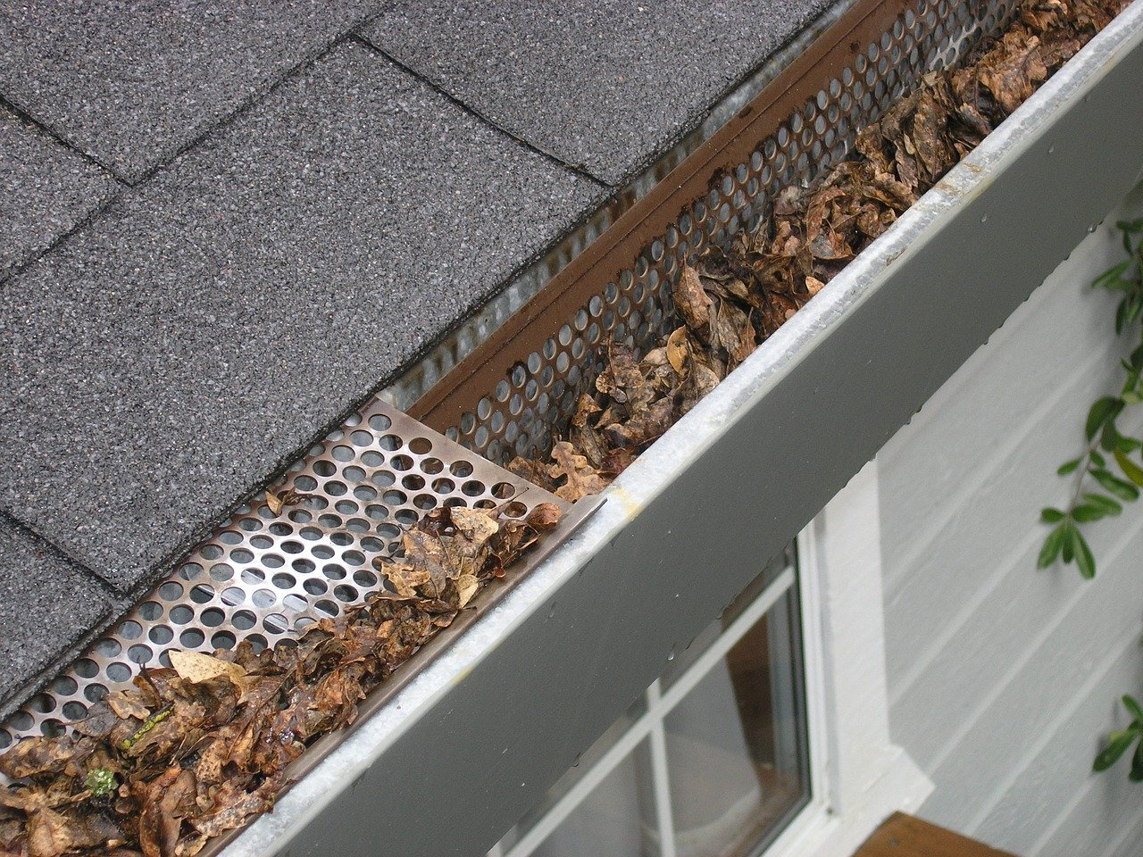 eavestrough debris - summer home maintenance