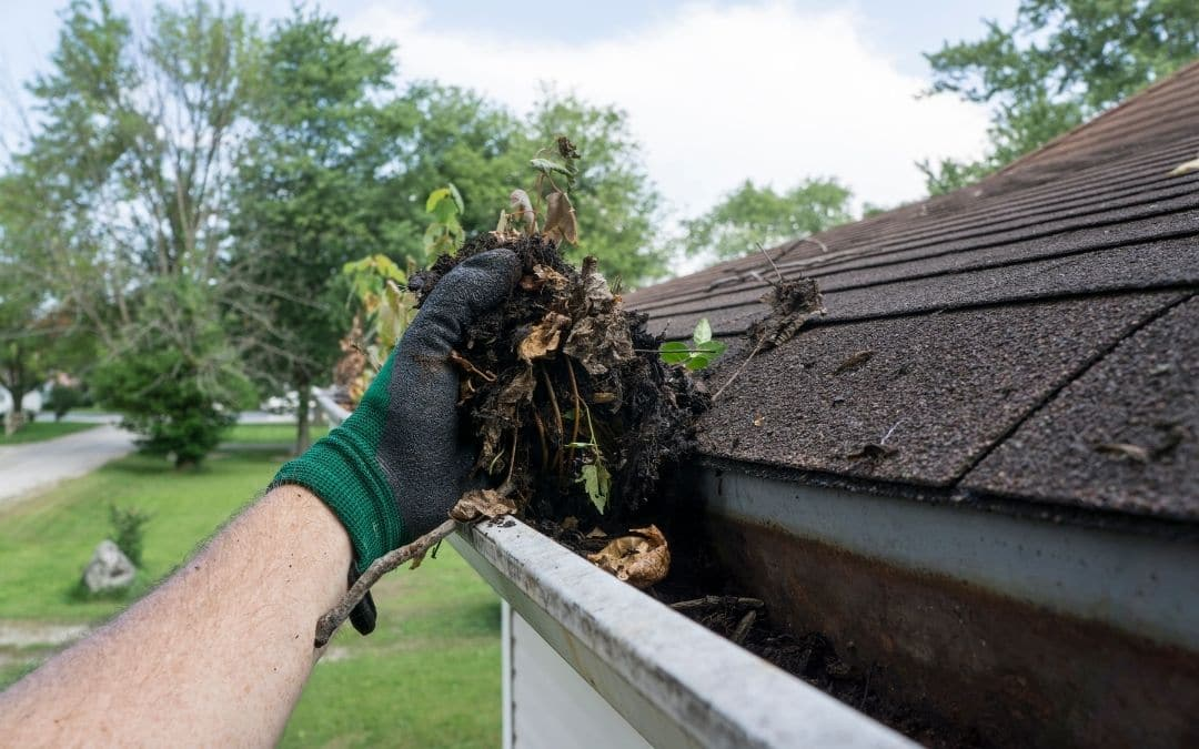 clean-gutters-and-downspouts-spring-home-maintenance-Weaver-Exterior