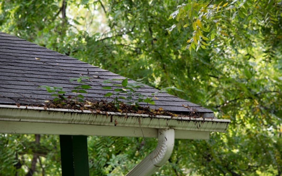constant-clogging-may-mean-eavestroughs-need-repair-or-replacement-Weaver-Exterior